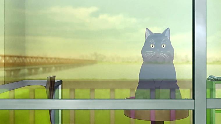 Daru observa aquel mundo que Miyu tanto desea.